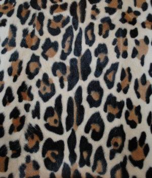 Козлик леопард
