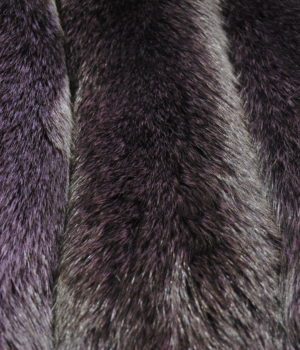 Песец из серого в фиолетовый