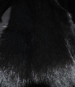 Песец из серого в черный