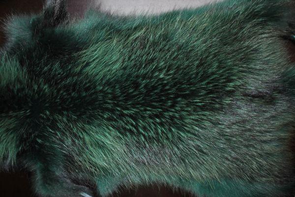 Енот зеленый