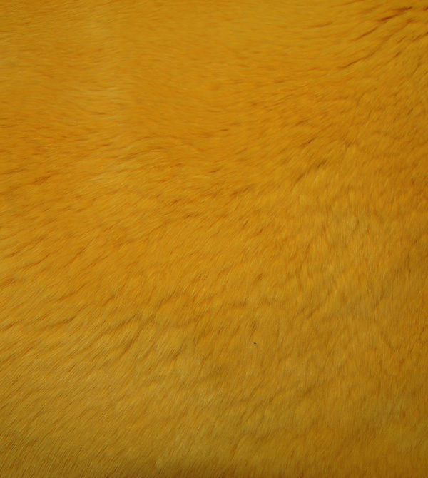 Кролик рекс желтый