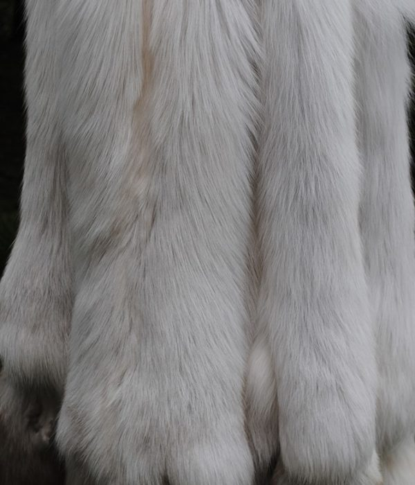 Лиса финская Show glow fox